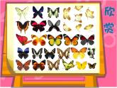 第16課 蝴蝶飛