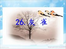 小學語文人教部編版 (五四制)三年級上冊26 灰雀評課ppt課件