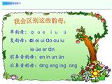 一年级汉语拼音专项复习