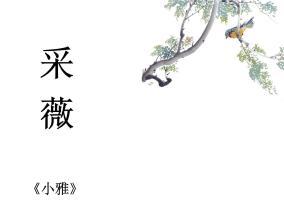 語文六年級下冊1 采薇(節選)課堂教學ppt課件
