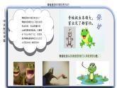 小青蛙 课件PPT