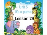 三年級下冊英語課件-Unit5 It's a parrot. Lesson 29人教精通版