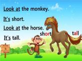 三年級下冊英語課件-Lesson 2 It's too short  科普版