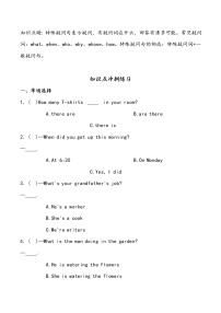 【小升初沖刺】英語專項復習:第3部分 句法 5、特殊疑問句—拔高試卷