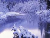 4.12《寒冷的冬天》 课件