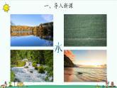 蘇教版科學一年級下冊:4 水是什么樣的 PPt課件+教案+視頻