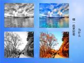 2020—2021學年人教版七年級下冊 第二單元 第1課《色彩的魅力》課件