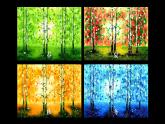 2020—2021學年人教版 七年級美術下冊第2單元第1課 色彩的魅力課件