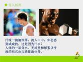 北京版生物七年級下冊《汗液的排出》課件PPT