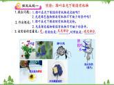 魯科版(五四學制)生物六年級下冊 第四章 綠色植物是生物圈中有機物的制造者  復習ppt課件