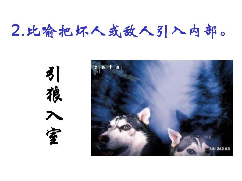 18.《狼》课件06