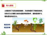 4.2《土壤與植物》PPT課件+教案+練習+視頻 華師大版七年級科學下冊