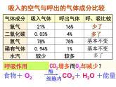 牛津上海版科學六年級下冊 生物是怎樣呼吸的(第1課時) PPT課件
