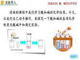 實驗活動6《酸、堿的化學性質》課件