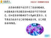 實驗活動7《溶液酸堿性的檢驗》課件