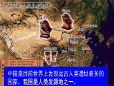 第1课 中国境内早期人类的代表——北京人 课件-部编版历史七年级上册(共21张PPT)