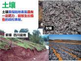 高中地理湘教版必修一第五章第二節土壤的形成課件