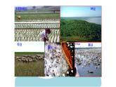 2.5 《中國的農業》 一輪復習課件PPT
