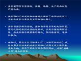 高中人教版美術 鑒賞  (一)中國美術鑒賞 2傳統藝術的根 玉器 陶瓷和青銅器藝術 課件 (共28張PPT)