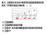 """5.2细胞的能量""""货币"""" ATP课件PPT"""