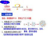 6.1 细胞的增殖课件PPT