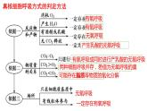 5.3细胞呼吸的原理与应用(第3课时)课件PPT