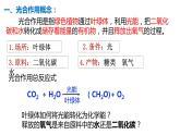 5.4 光合作用与能量转化(第2课时)课件PPT