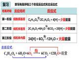 5.3细胞呼吸的原理与应用 (第2课时)课件PPT
