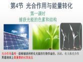 5.4 光合作用与能量转化(第1课时)课件PPT