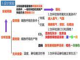 5.3细胞呼吸的原理与应用(第1课时)课件PPT